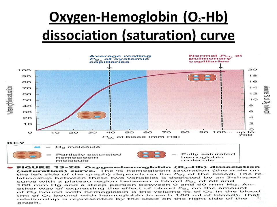 Oxygen-Hemoglobin (O 2 -Hb) dissociation (saturation) curve 10