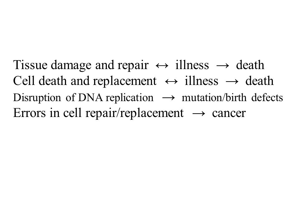 Tissue damage and repair illness death Cell death and replacement illness death Disruption of DNA replication mutation/birth defects Errors in cell repair/replacement cancer
