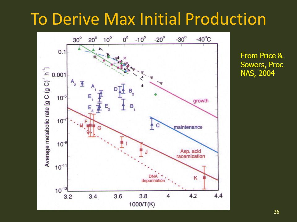 To Derive Max Initial Production 36 From Price & Sowers, Proc NAS, 2004