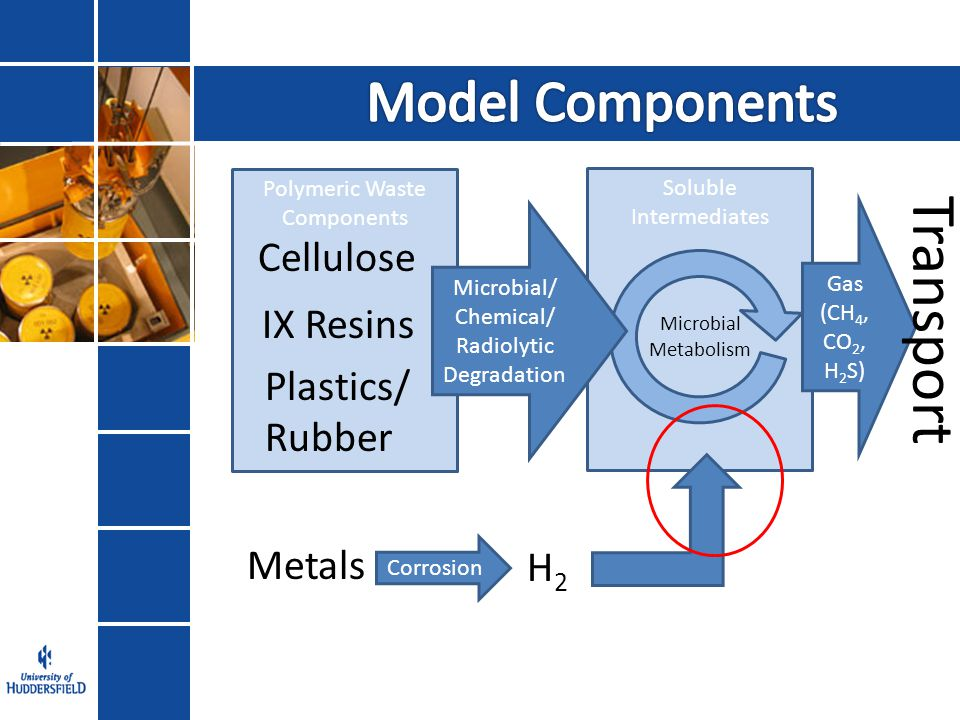 Polymeric Waste Components Cellulose IX Resins Plastics/ Rubber Soluble Intermediates Microbial/ Chemical/ Radiolytic Degradation Microbial Metabolism Metals Gas (CH 4, CO 2, H 2 S) Corrosion H2H2 Transport