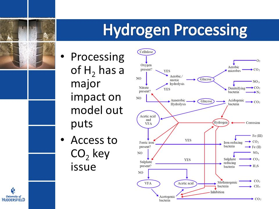 Processing of H 2 has a major impact on model out puts Access to CO 2 key issue
