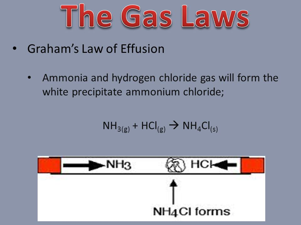Grahams Law of Effusion Ammonia and hydrogen chloride gas will form the white precipitate ammonium chloride; NH 3(g) + HCl (g) NH 4 Cl (s)