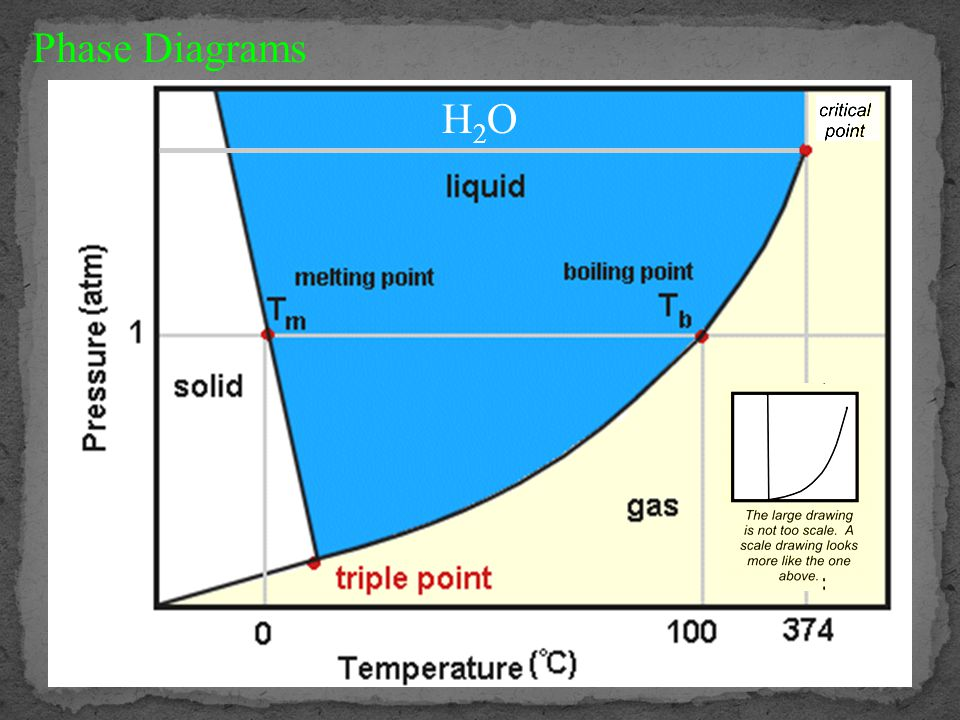 Atmospheric Pressure Atmospheric pressure decreases rapidly with height.