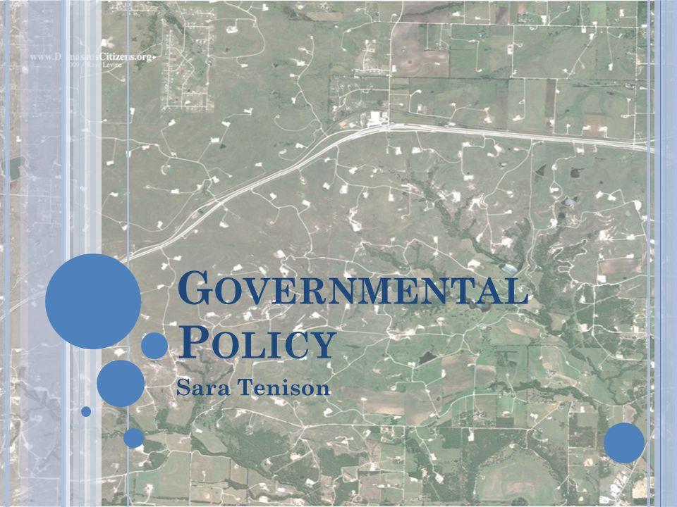 G OVERNMENTAL P OLICY Sara Tenison