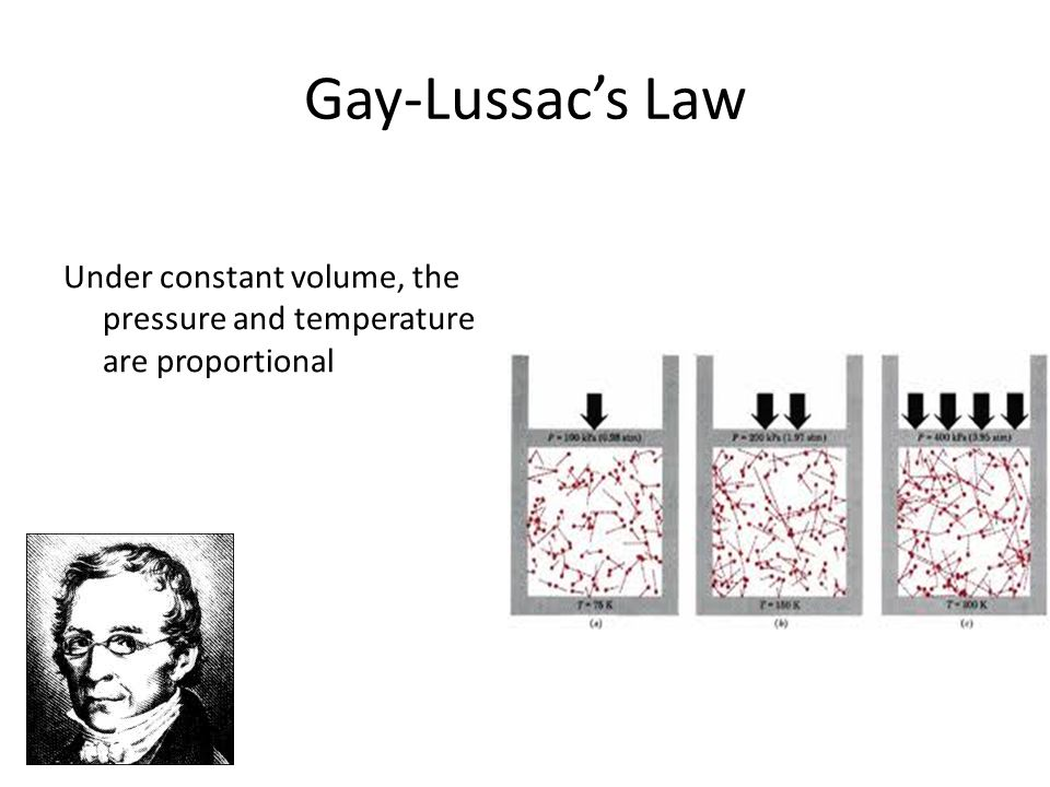 Avogadros Law Equal volumes of gases at the same temperature and pressure have the same number of molecules
