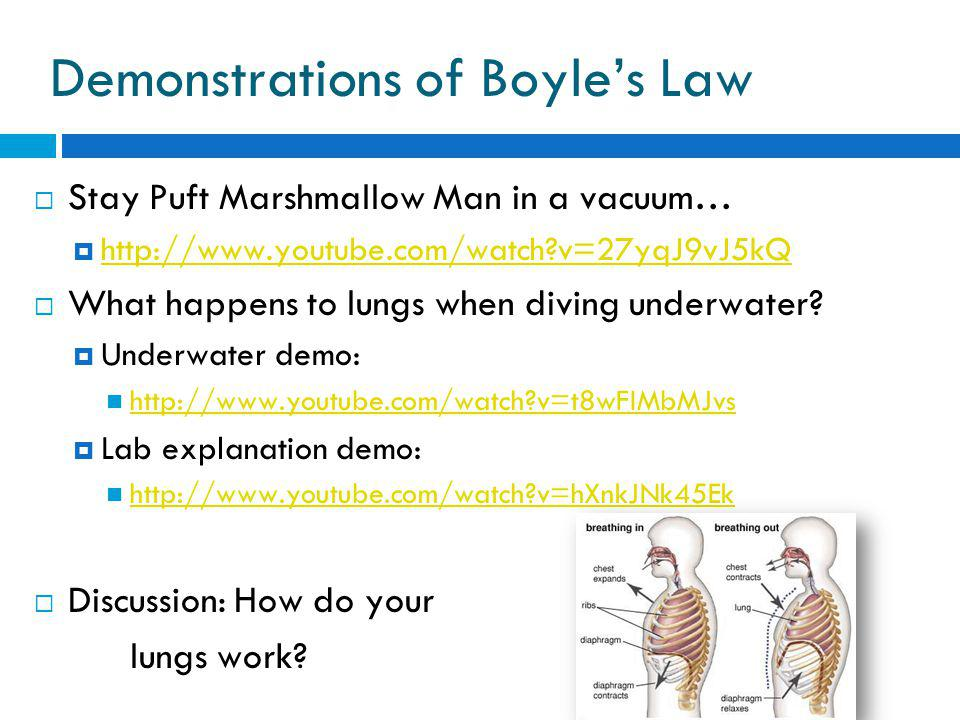Demonstrations of Boyles Law Stay Puft Marshmallow Man in a vacuum… http://www.youtube.com/watch v=27yqJ9vJ5kQ What happens to lungs when diving underwater.