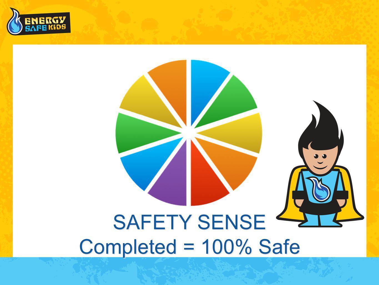 SAFETY SENSE Completed = 100% Safe
