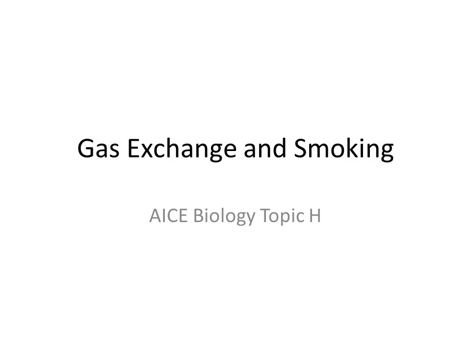 Gas Exchange and Smoking AICE Biology Topic H