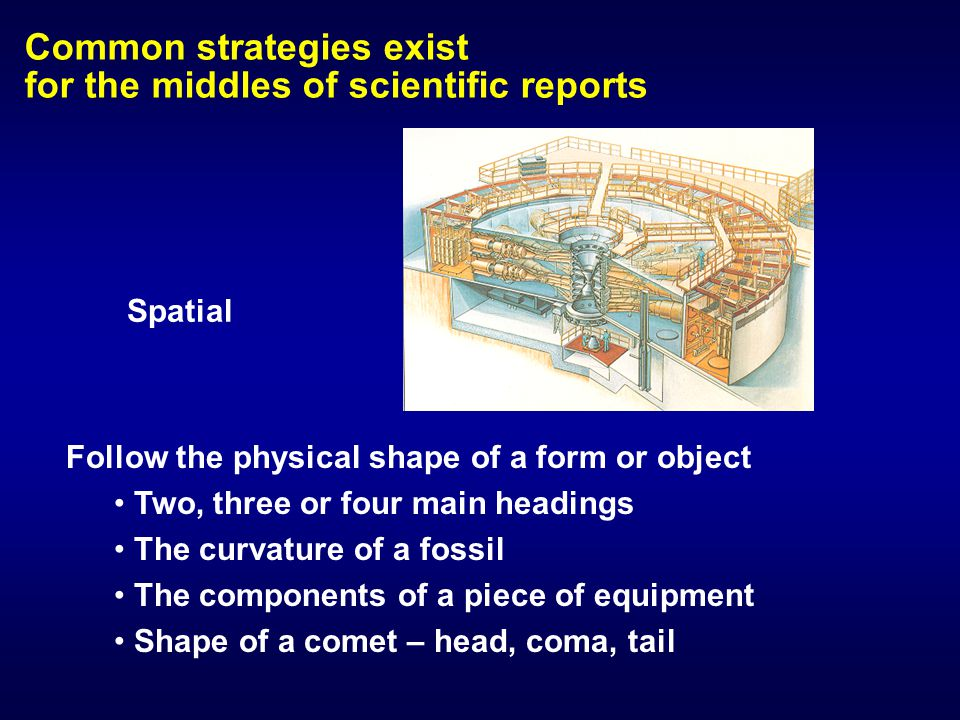 Common strategies exist for the middles of scientific reports Follow the physical shape of a form or object Two, three or four main headings The curva