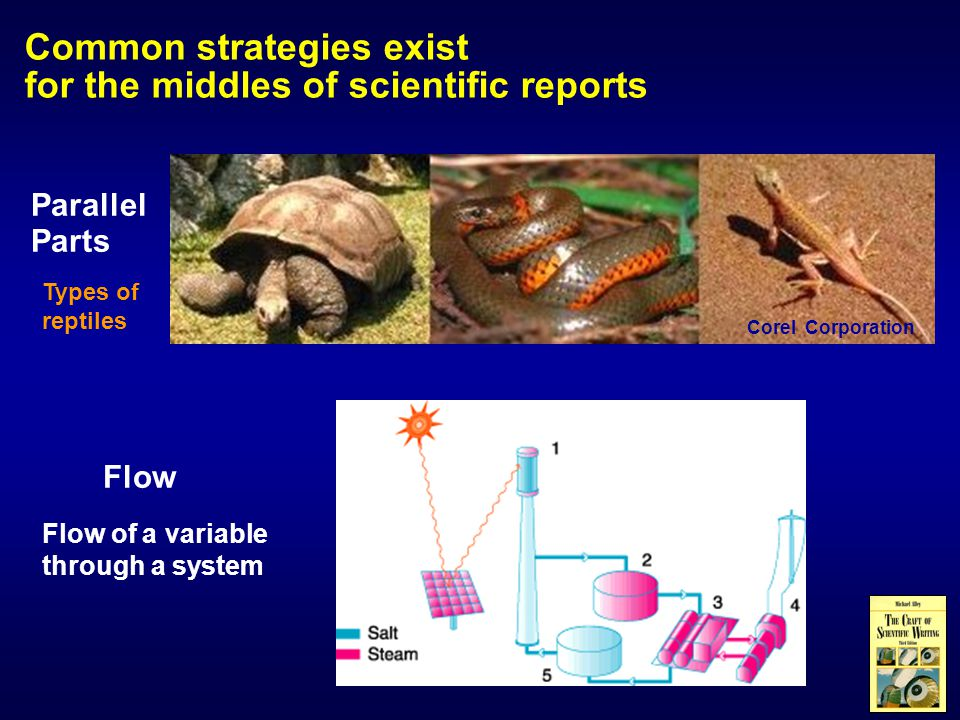 Common strategies exist for the middles of scientific reports Parallel Parts Corel Corporation Flow Flow of a variable through a system Types of reptiles