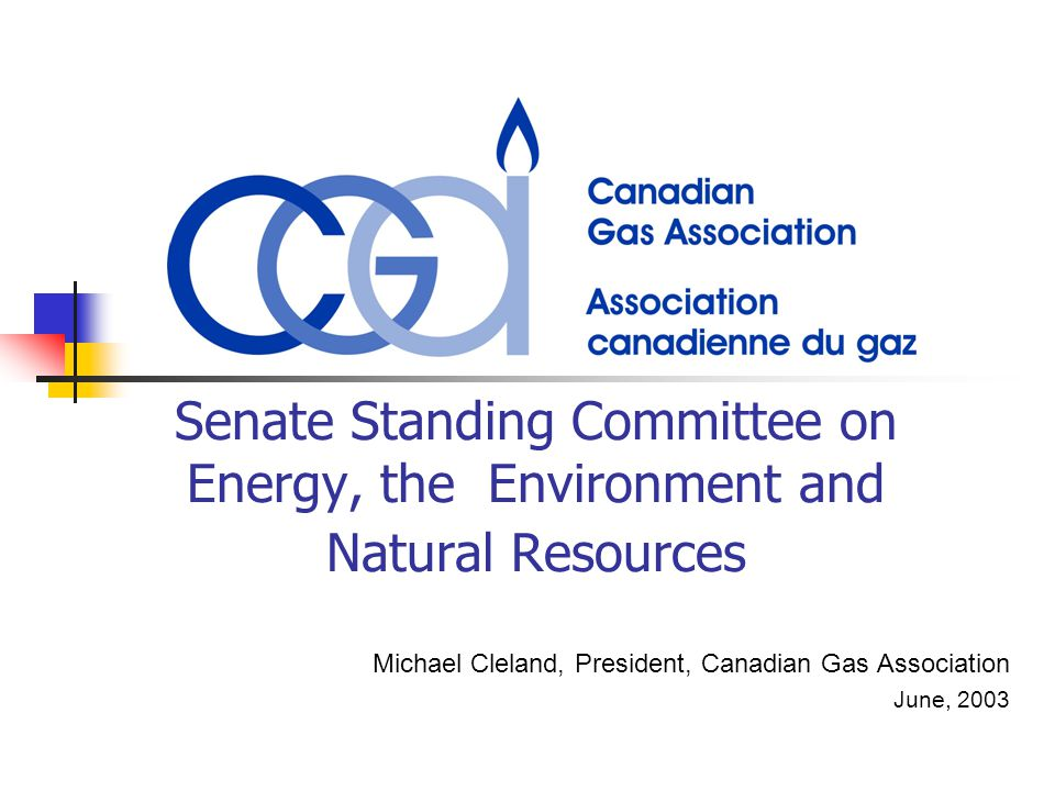 Senate Standing Committee on Energy, the Environment and Natural Resources Michael Cleland, President, Canadian Gas Association June, 2003