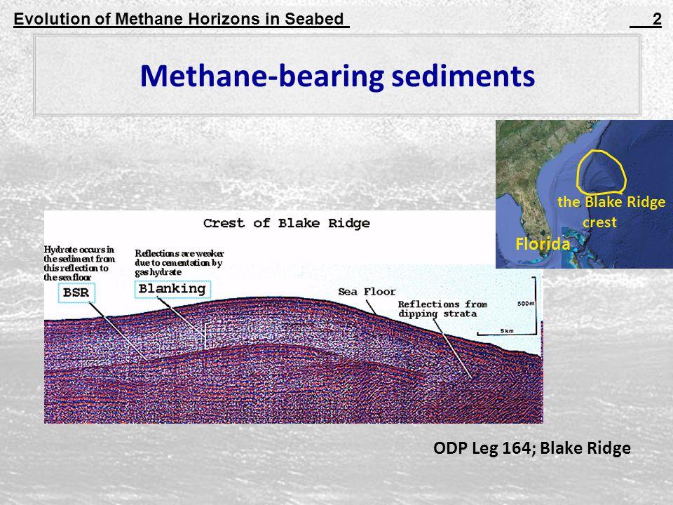 Evolution of Methane Horizons in Seabed 2 Methane-bearing sediments ODP Leg 164; Blake Ridge the Blake Ridge crest Florida