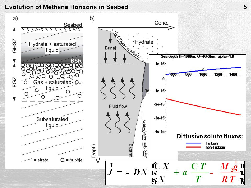 Evolution of Methane Horizons in Seabed 5 Diffusive solute fluxes: