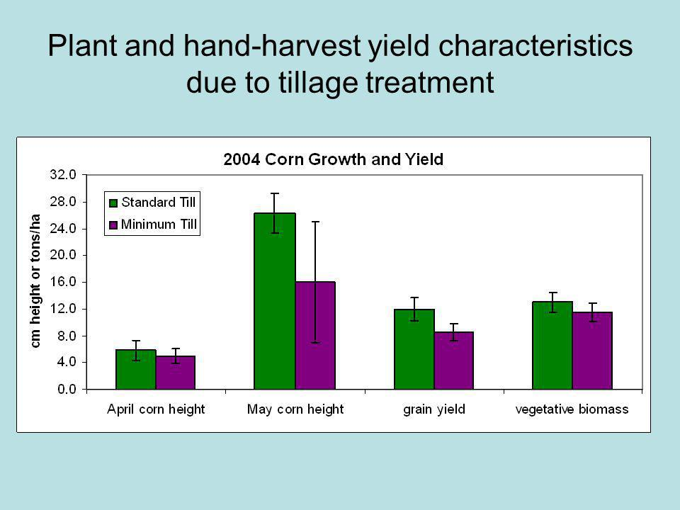 Plant and hand-harvest yield characteristics due to tillage treatment