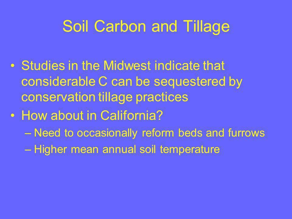 Minimum till and standard till fields Corn planted the following April (2004)