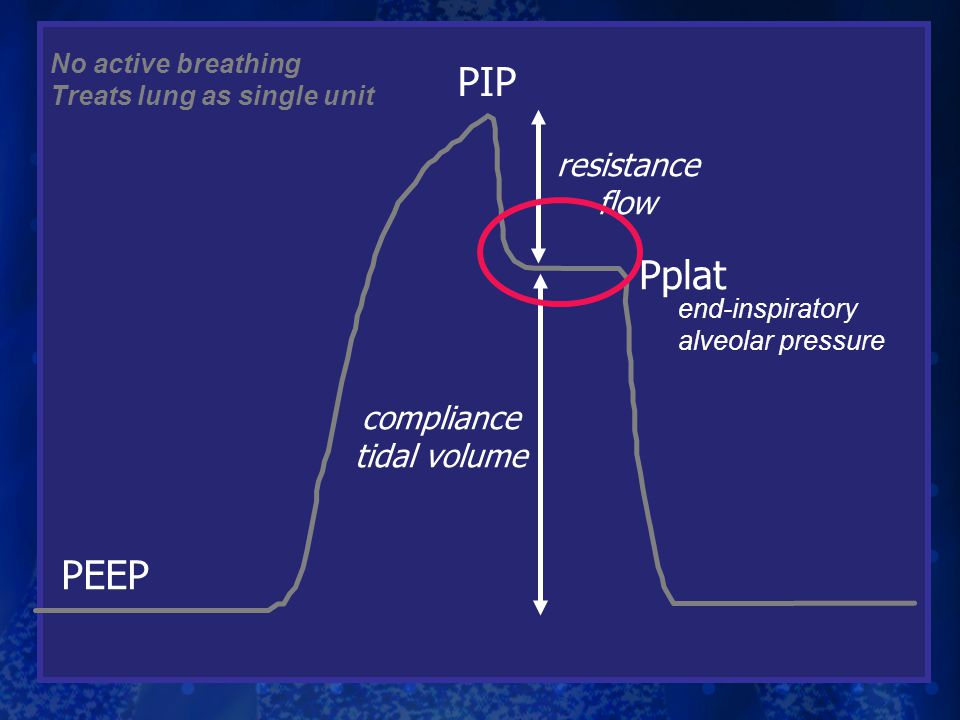 PIP Pplat resistance flow compliance tidal volume No active breathing Treats lung as single unit end-inspiratory alveolar pressure