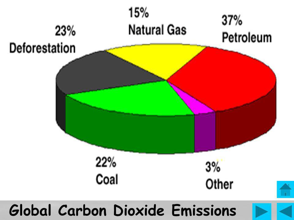 Nitrogen oxides (NOx) include various nitrogen compounds like nitrogen dioxide and nitric oxide.