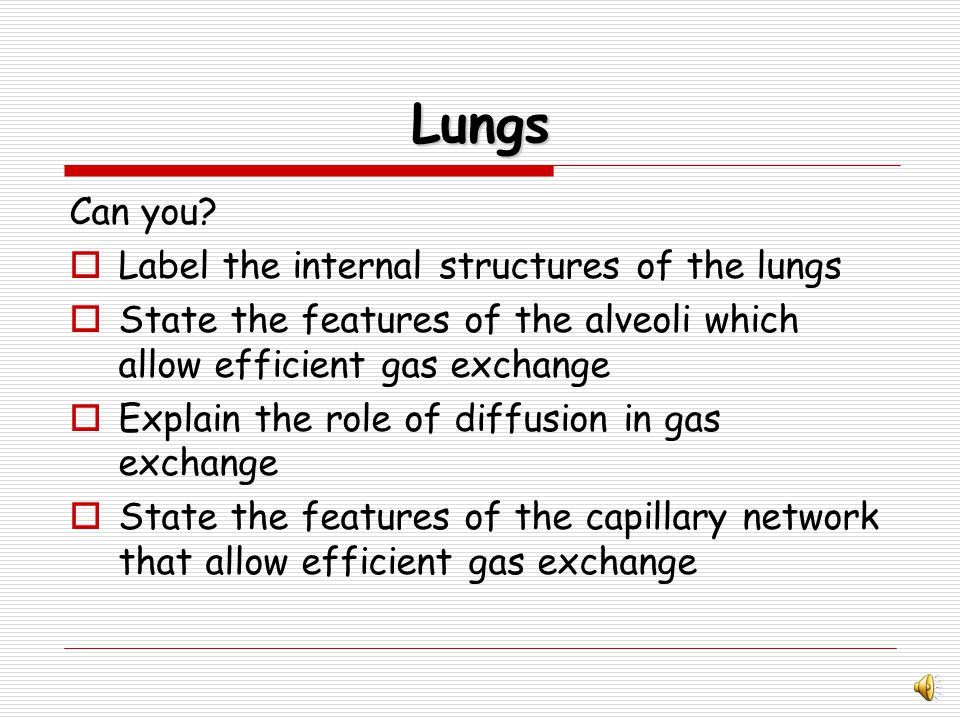 Features of capillaries for efficient gas exchange dense network to carry CO 2 and O 2 Large surface area to transport gases Lining is one cell thick so gases can pass through quickly and easily.