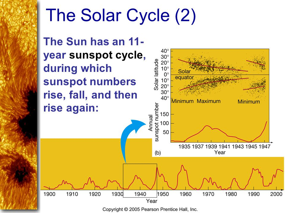 The Sun has an 11- year sunspot cycle, during which sunspot numbers rise, fall, and then rise again: The Solar Cycle (2)