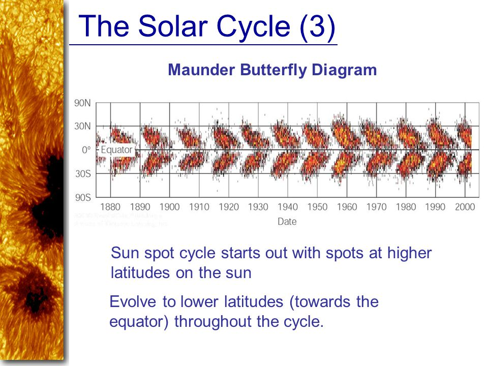 The Solar Cycle (3) Maunder Butterfly Diagram Sun spot cycle starts out with spots at higher latitudes on the sun Evolve to lower latitudes (towards t