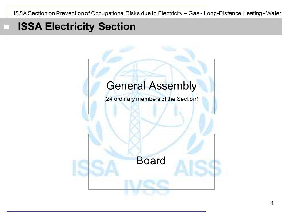 ISSA Section on Prevention of Occupational Risks due to Electricity – Gas - Long-Distance Heating - Water 4 ISSA Electricity Section General Assembly (24 ordinary members of the Section) Board