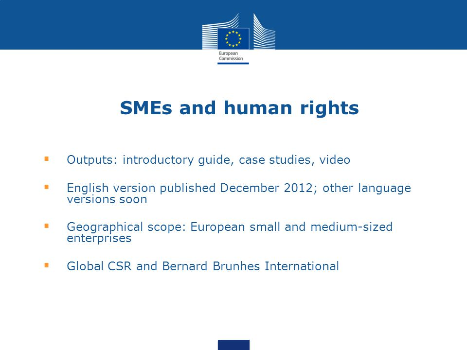 SMEs and human rights Outputs: introductory guide, case studies, video English version published December 2012; other language versions soon Geographical scope: European small and medium-sized enterprises Global CSR and Bernard Brunhes International