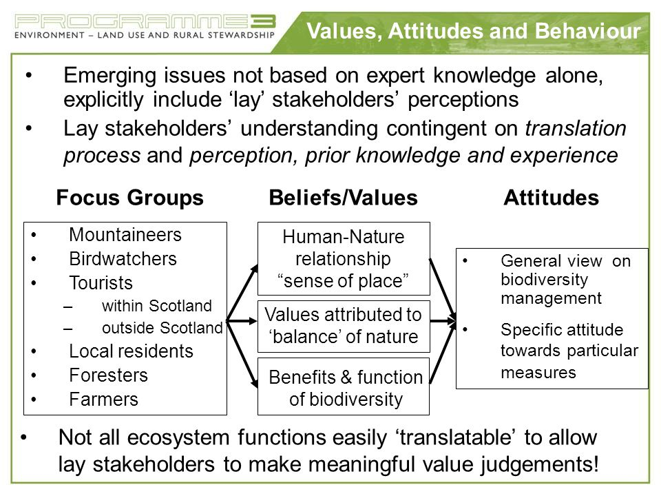 Values, Attitudes and Behaviour Beliefs/ValuesAttitudesFocus Groups Mountaineers Birdwatchers Tourists –within Scotland –outside Scotland Local reside