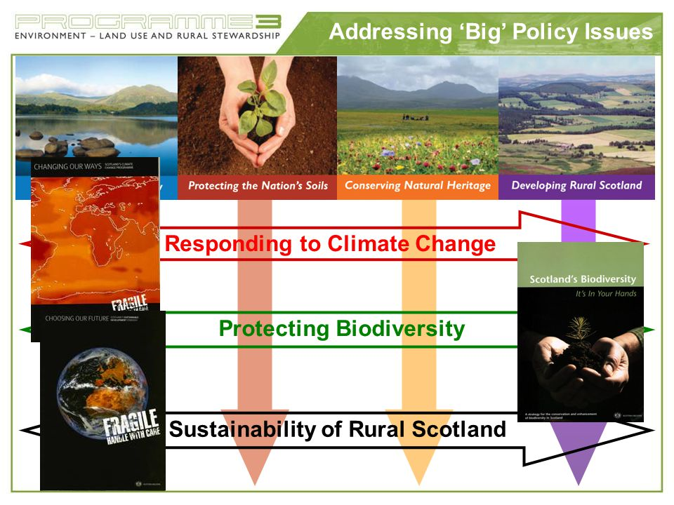 Diversification for SD Scientific American Stewardship payments Maintaining biodiversity Carbon conservation – in particular soil C Renewable power Sustainable timber Water resources – pollution and flood control Food security - premium