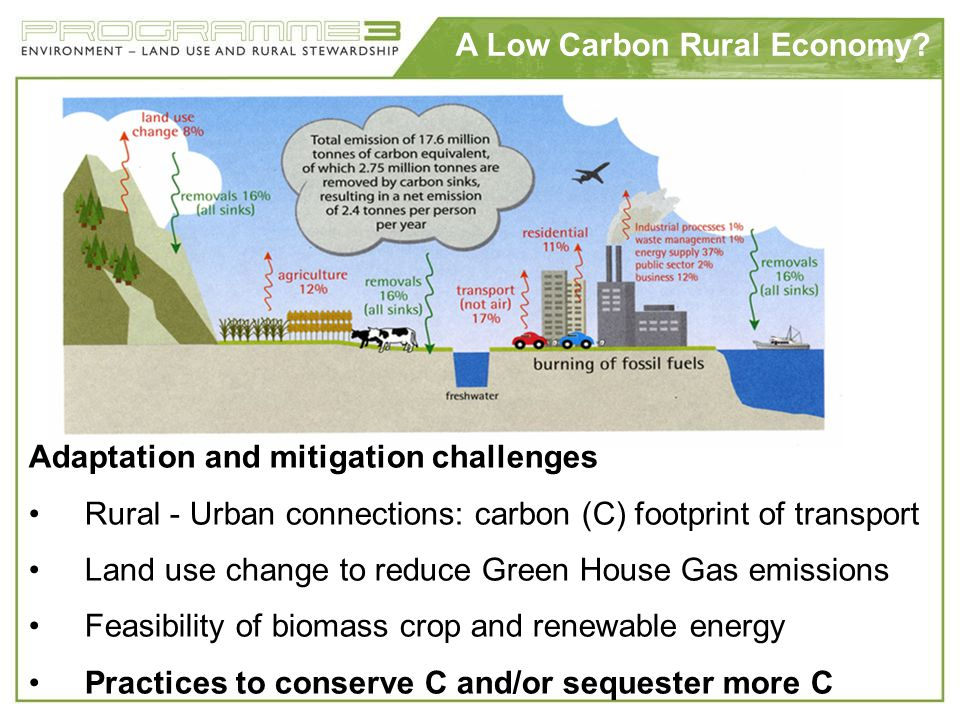 A Low Carbon Rural Economy? Adaptation and mitigation challenges Rural - Urban connections: carbon (C) footprint of transport Land use change to reduc