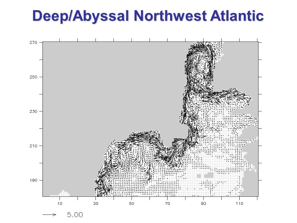 Deep/Abyssal Northwest Atlantic