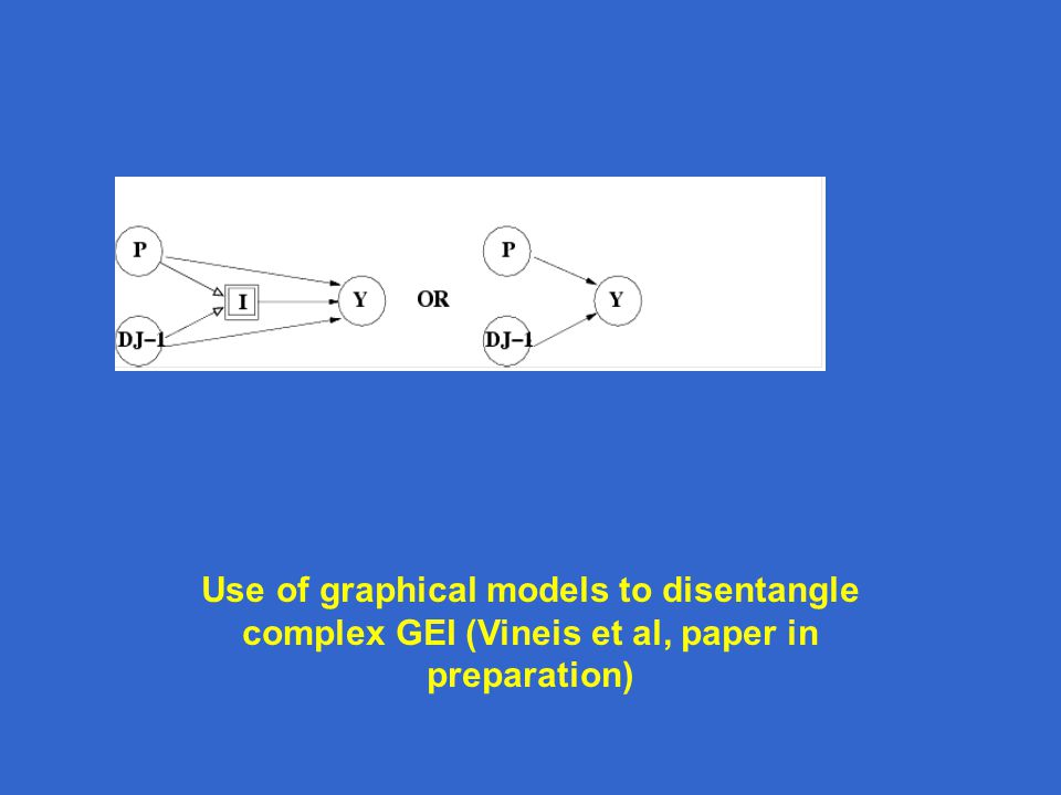 Use of graphical models to disentangle complex GEI (Vineis et al, paper in preparation)