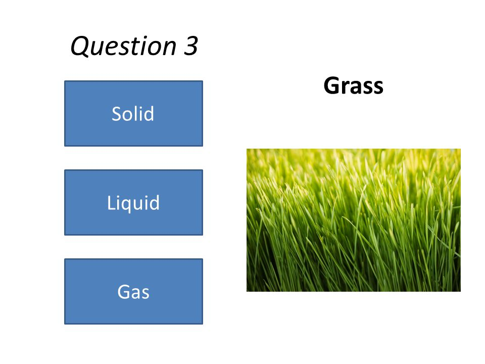 Question 3 Grass Solid Gas Liquid