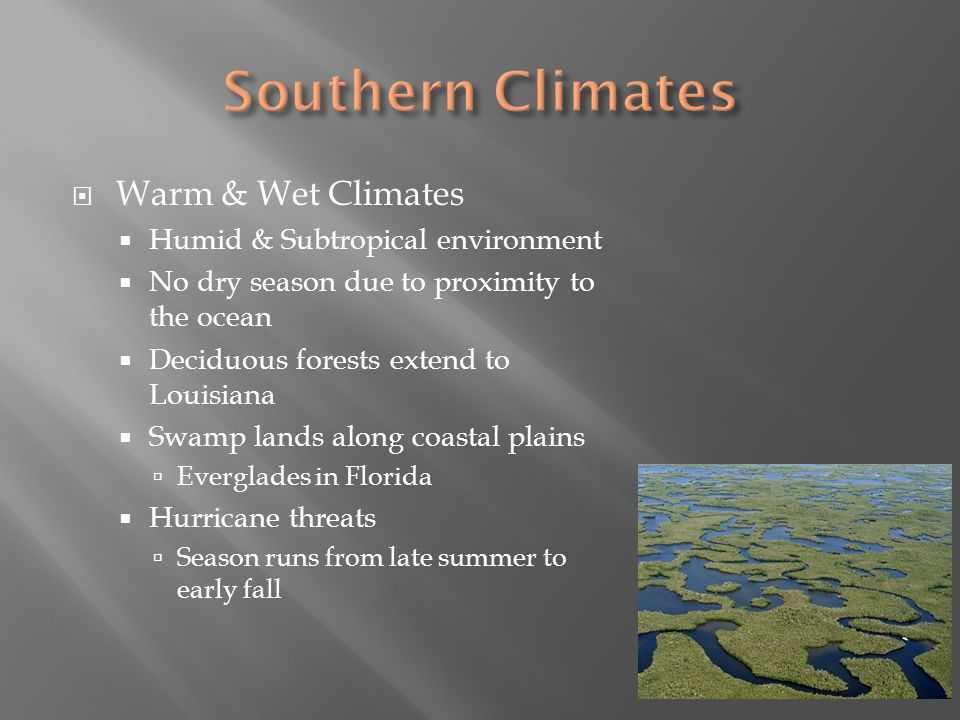Warm & Wet Climates Humid & Subtropical environment No dry season due to proximity to the ocean Deciduous forests extend to Louisiana Swamp lands alon