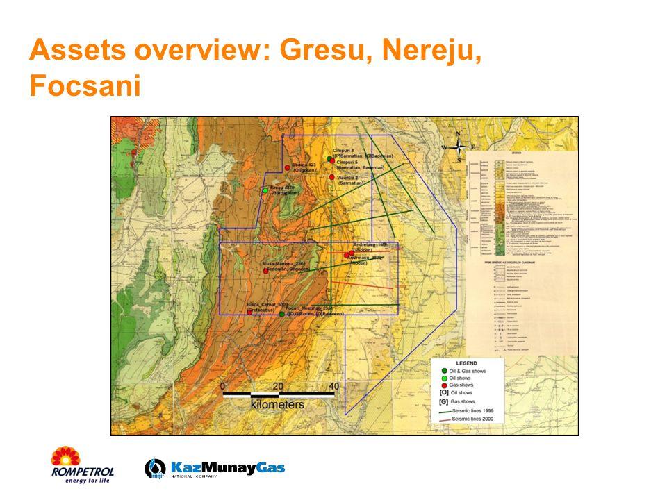 Assets overview: Gresu, Nereju, Focsani