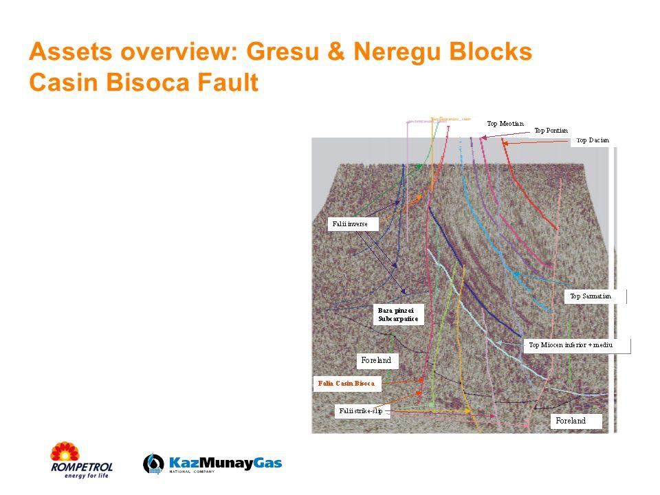 Assets overview: Gresu & Neregu Blocks Casin Bisoca Fault