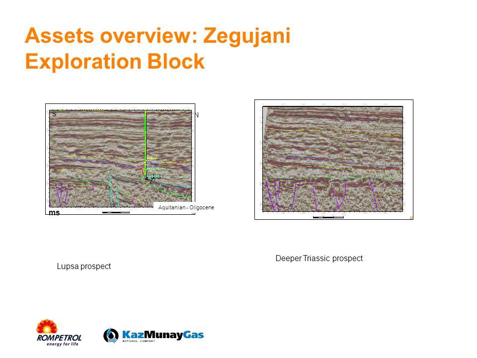 Assets overview: Zegujani Exploration Block ms S N Aquitanian - Oligocene Lupsa prospect Deeper Triassic prospect