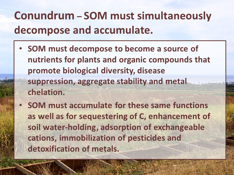 Conundrum – SOM must simultaneously decompose and accumulate. SOM must decompose to become a source of nutrients for plants and organic compounds that