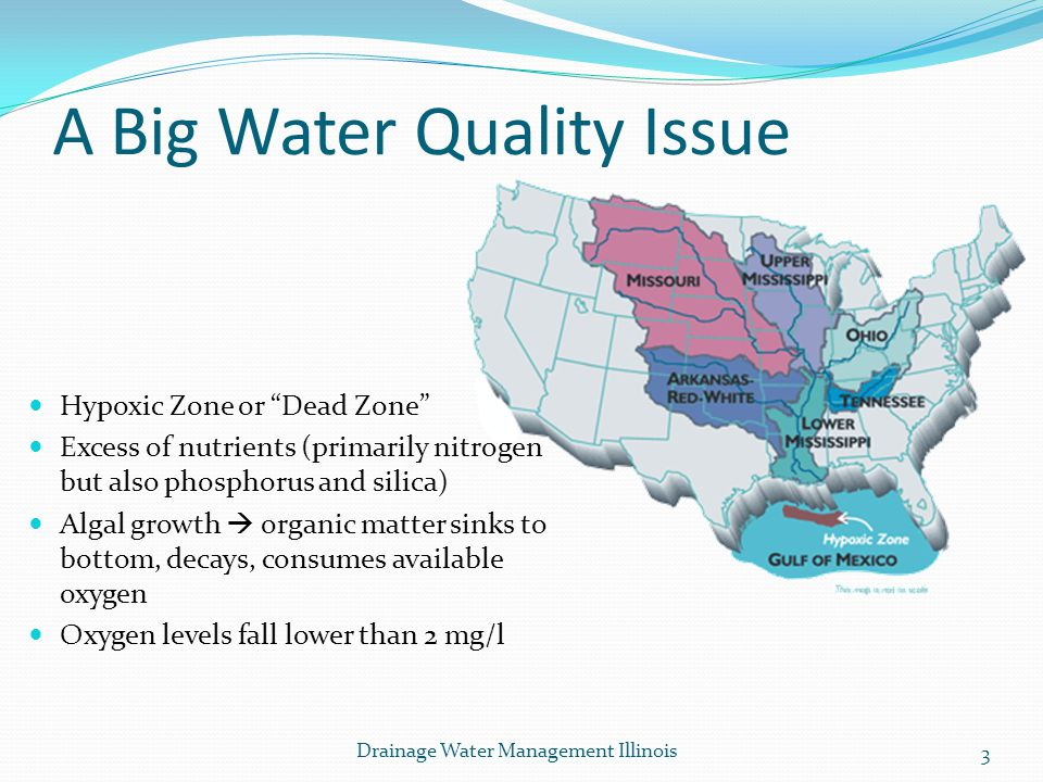 A Big Water Quality Issue Hypoxic Zone or Dead Zone Excess of nutrients (primarily nitrogen but also phosphorus and silica) Algal growth organic matte