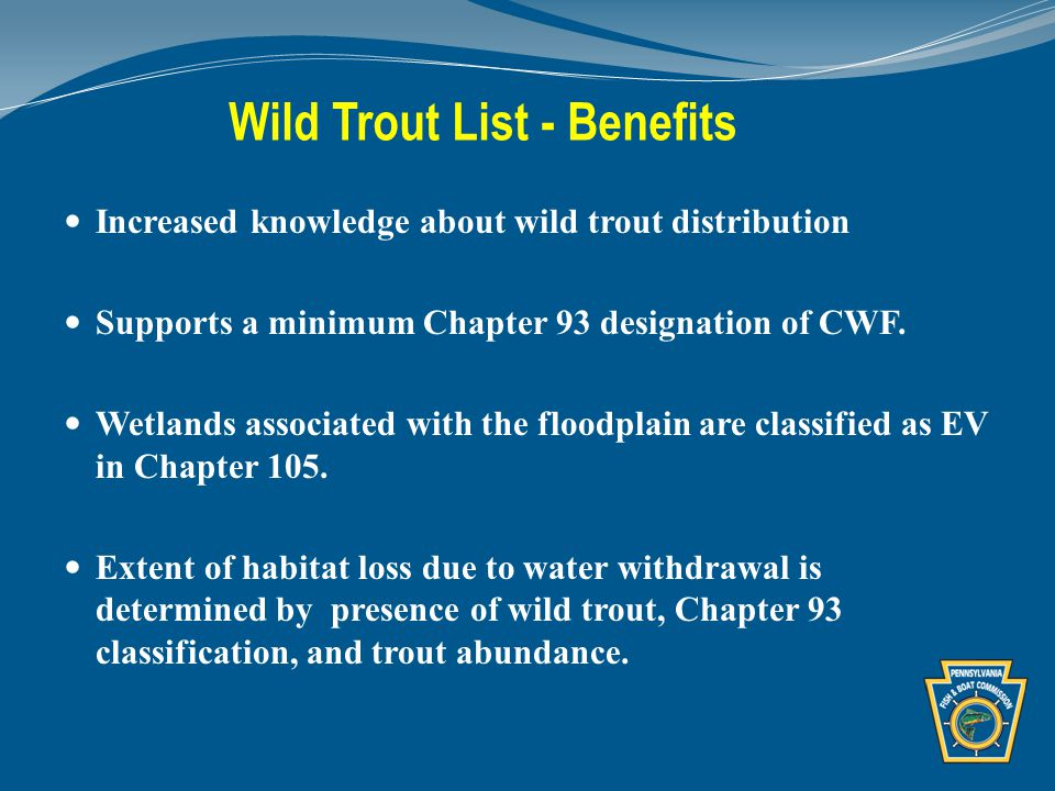 Wild Trout List - Benefits Increased knowledge about wild trout distribution Supports a minimum Chapter 93 designation of CWF.