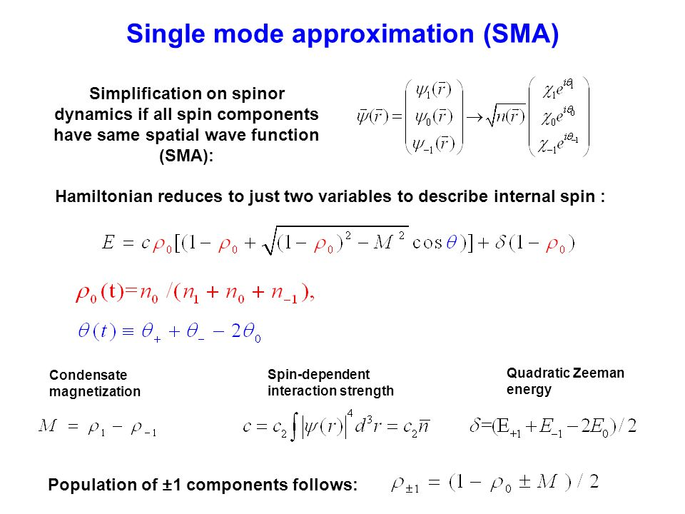 Single mode approximation (SMA) Spin-dependent interaction strength Quadratic Zeeman energy Condensate magnetization Hamiltonian reduces to just two variables to describe internal spin : Simplification on spinor dynamics if all spin components have same spatial wave function (SMA): Population of ±1 components follows: