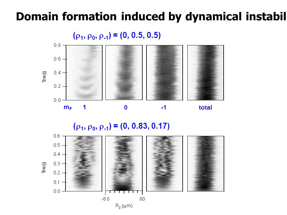 mFmF 1 0 ( 1, 0, -1 ) = (0, 0.5, 0.5) ( 1, 0, -1 ) = (0, 0.83, 0.17) total Domain formation induced by dynamical instability