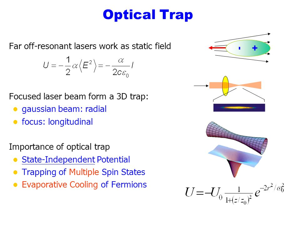 Optical Trap Far off-resonant lasers work as static field Focused laser beam form a 3D trap: l gaussian beam: radial l focus: longitudinal Importance
