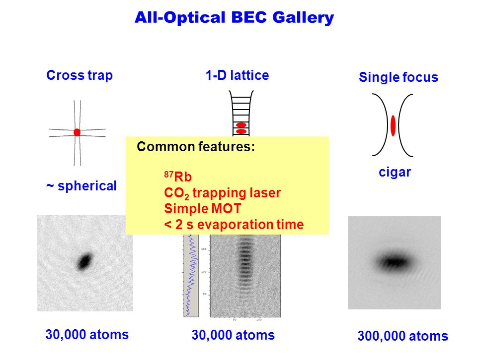 All-Optical BEC Gallery Cross trap 1-D lattice Single focus ~ spherical disk cigar 30,000 atoms 300,000 atoms Common features: 87 Rb CO 2 trapping las