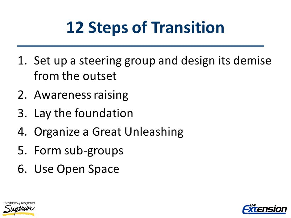 12 Steps of Transition 1.Set up a steering group and design its demise from the outset 2.Awareness raising 3.Lay the foundation 4.Organize a Great Unleashing 5.Form sub-groups 6.Use Open Space