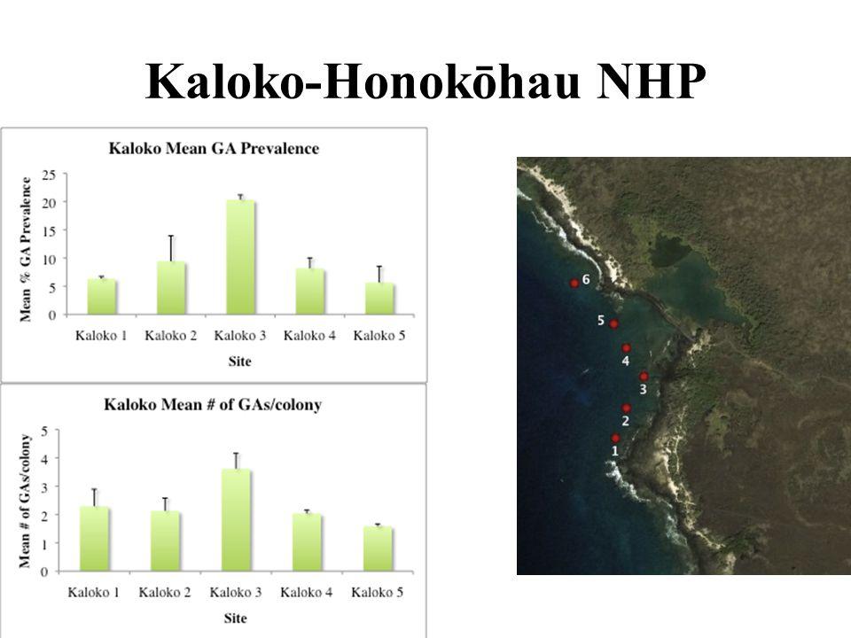 Kaloko-Honokōhau NHP