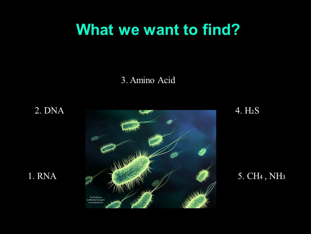 What we want to find 1. RNA 2. DNA 3. Amino Acid 4. H 2 S 5. CH 4, NH 3