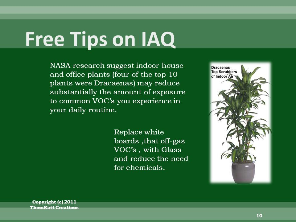 Copyright (c) 2011 ThomKatt Creations 10 NASA research suggest indoor house and office plants (four of the top 10 plants were Dracaenas) may reduce substantially the amount of exposure to common VOCs you experience in your daily routine.