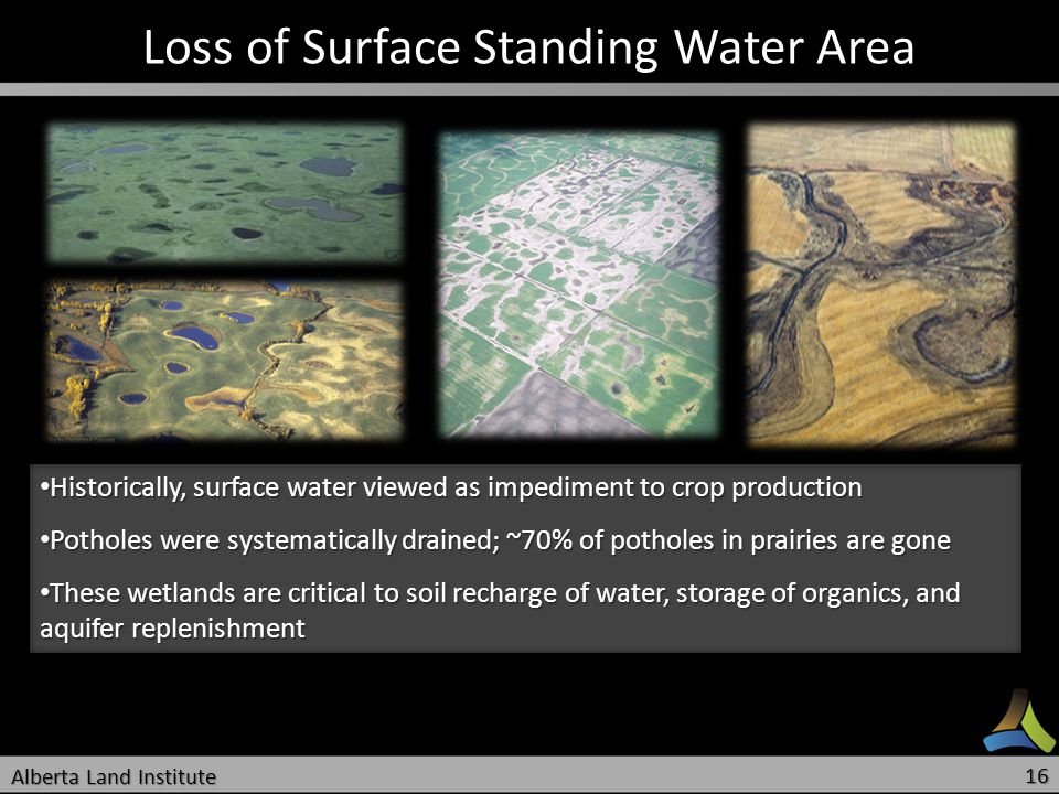 Loss of Surface Standing Water Area Historically, surface water viewed as impediment to crop production Historically, surface water viewed as impedime