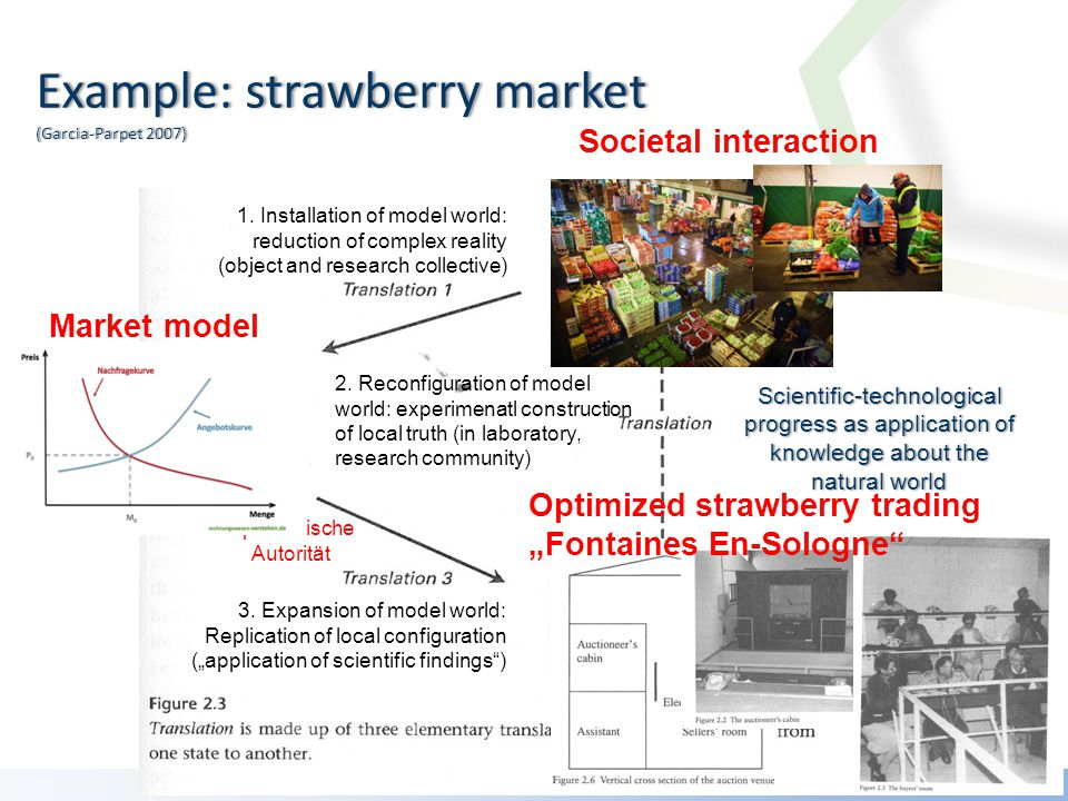 Example: strawberry market (Garcia-Parpet 2007) Scientific-technological progress as application of knowledge about the natural world 1.
