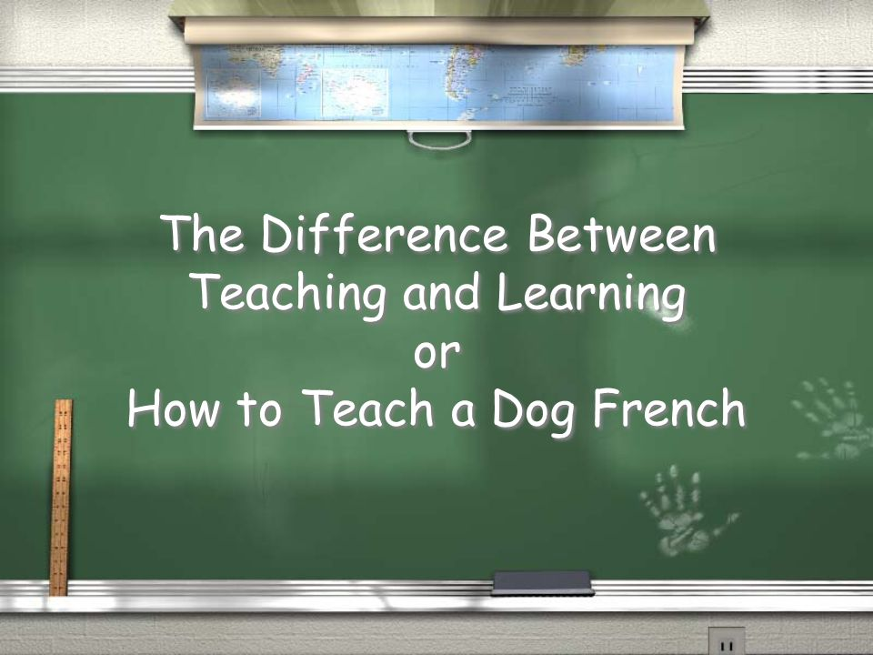 The Difference Between Teaching and Learning or How to Teach a Dog French